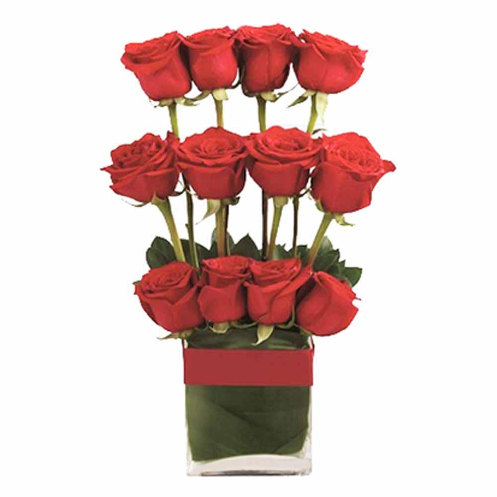 Jacks roses