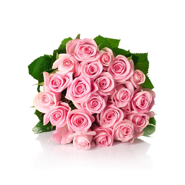 Simple 20 Pink Roses Bouquet