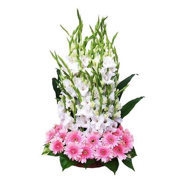 white glads with pink gerbera in cane basket