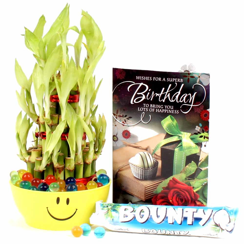Birthday Greeting Card, Good Luck Plant with Bounty Chocolate