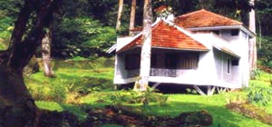 The Carlton - Kodaikanal
