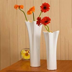Rimmed Vase