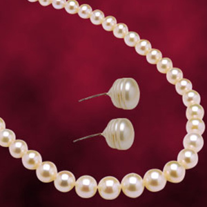 Jagdamba Single Line Pearl Set