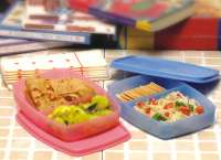 Tupperware Classic Slim Lunch
