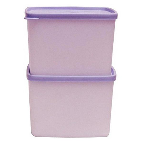 Tupperware Cool and Fresh Container - Set of 2