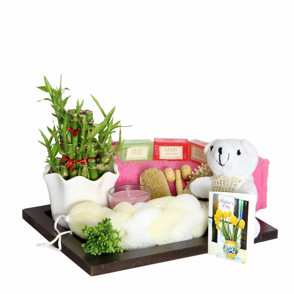 Regenerating Collection For Mom GIFTS111017