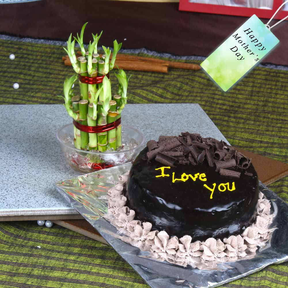 Half Kg Chocolate Cake with Goodluck Bamboo Plant