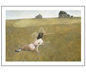 American Museum-Christina's World by Wyeth