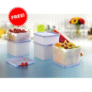 Tupperware Cool & Fresh Container Set + Free Cool & Fresh small Container