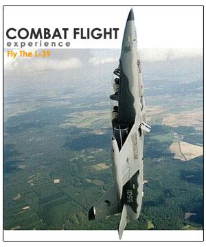 Combat Flight Experience