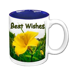 Personalized Two Tone Blue Mug