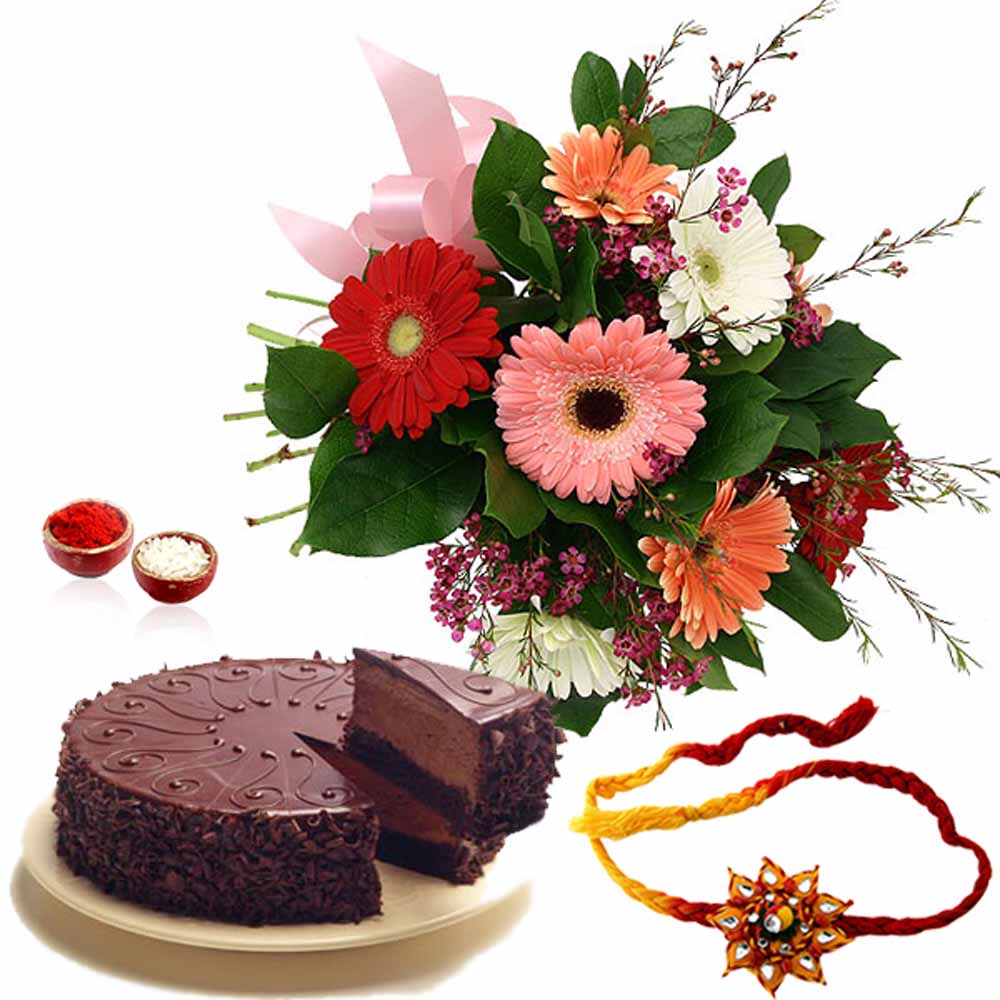 Gerberas Bouquet with Chocolate Cake and Rakhi