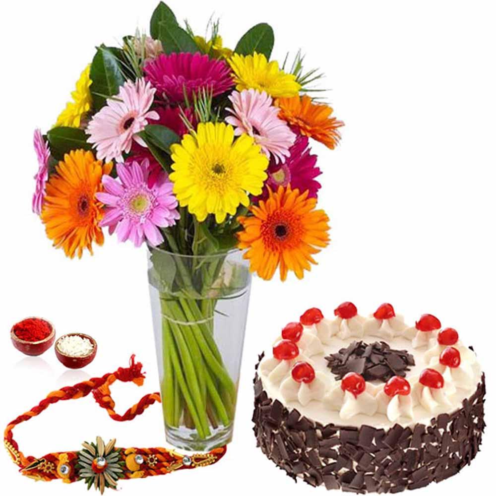 Rakhi with Cake and Gerberas