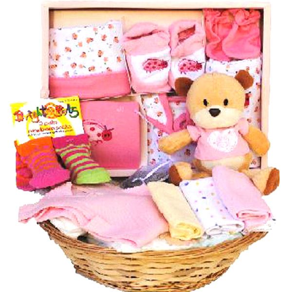 Gift Basket Combo for Baby Girl