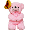 Toy Teddy Bright Bear with Heart