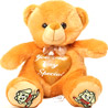 Toy Teddy Bear Sitting with In-built Heart