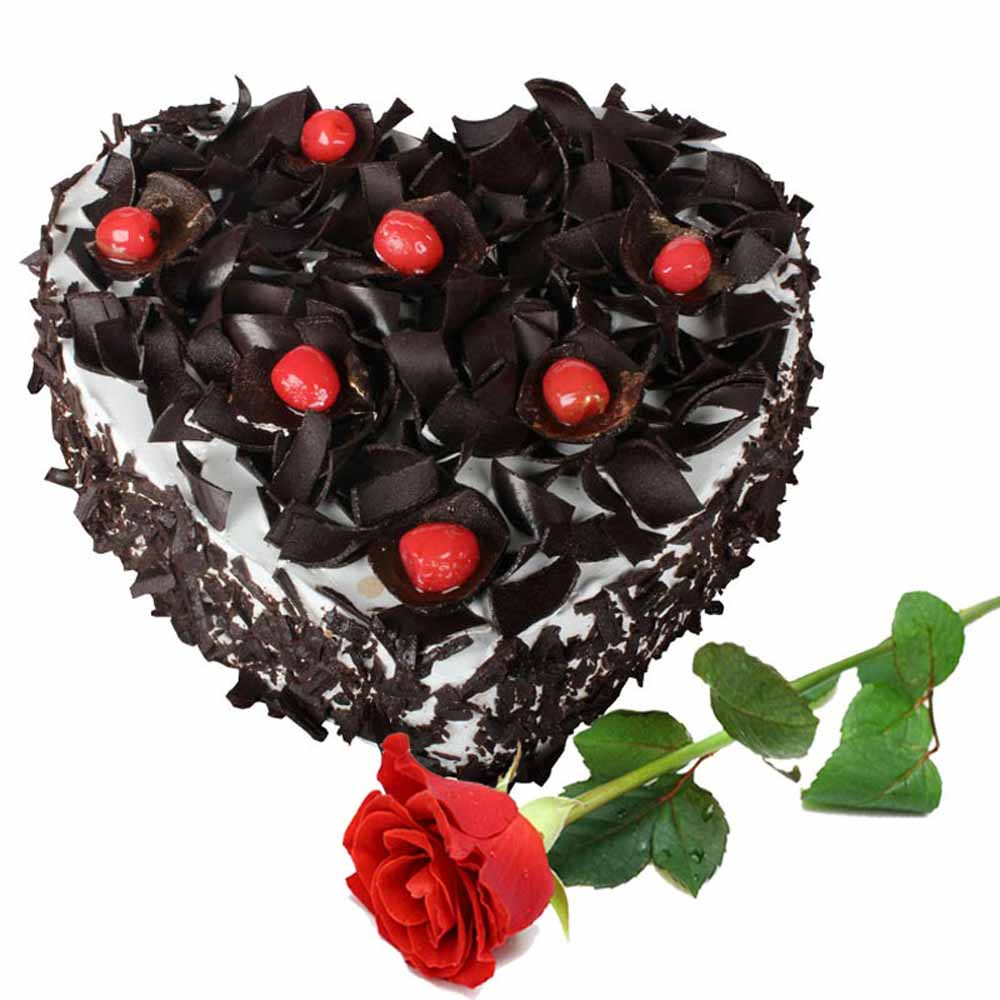 Valentine Flowers-Single Rose with Heart Shape Black Forest Cake