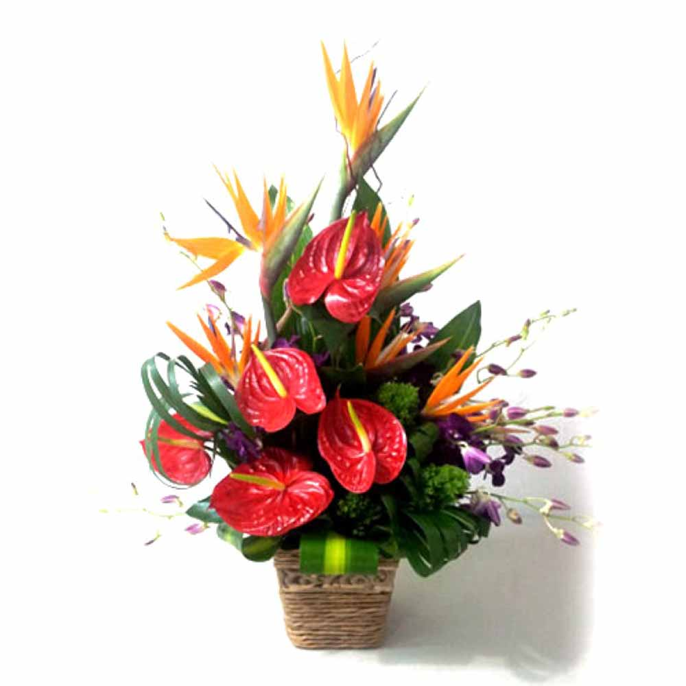 Valentine Flowers-Basket of Exotic Flowers For Love