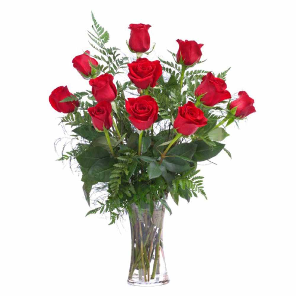 Dozen red roses in a vase india valentine flowers dozen red roses in a vase floridaeventfo Choice Image