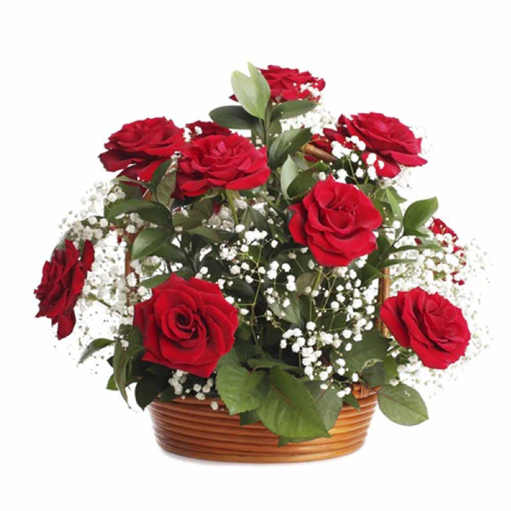 Valentines Day Gift of Dozen Red Roses Basket