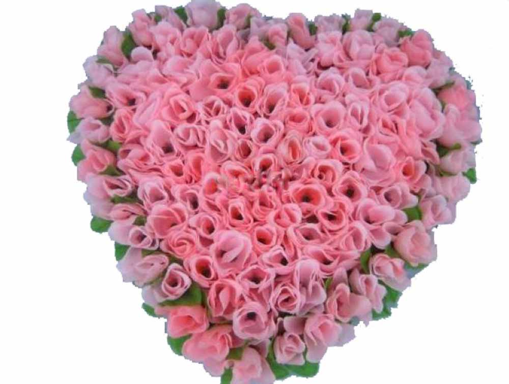 Send Valentine\'s Day Roses to India | Tajonline.com