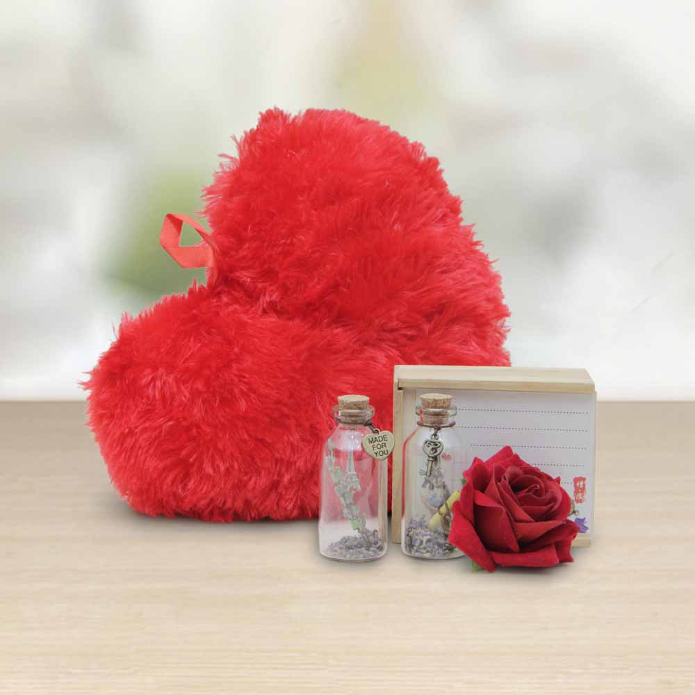 Red Heart Teddy and Rose Combo with Message Bottle