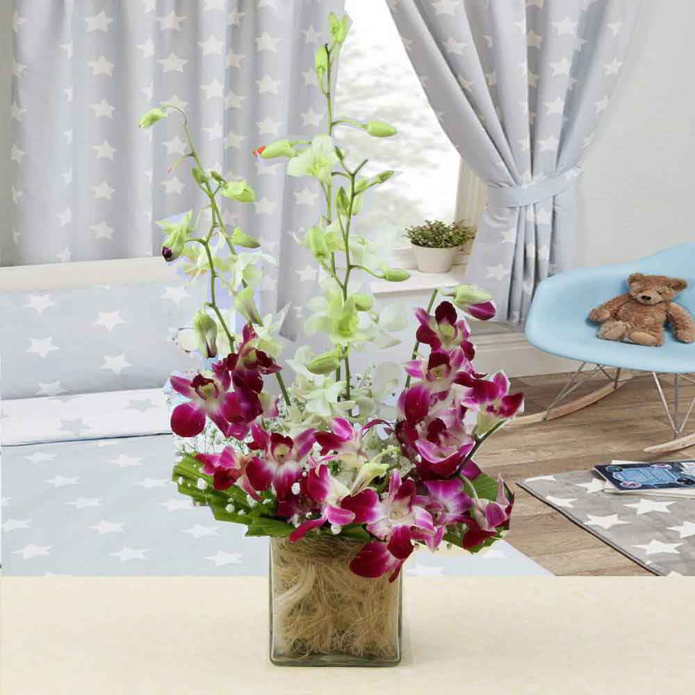 Fresh Flowers-Charming Mix Colors Orchid in Vase