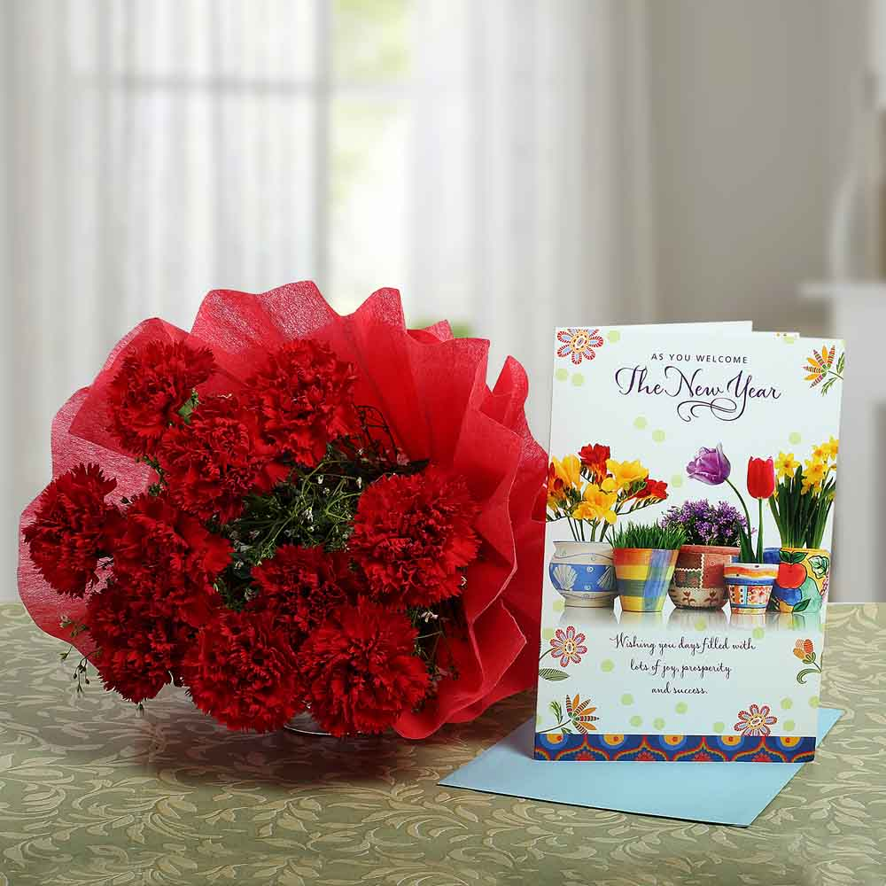 Carnations Rich New Year Wish